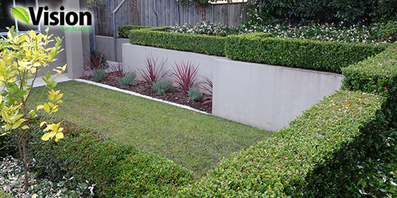 Garden Maintenance North Shore